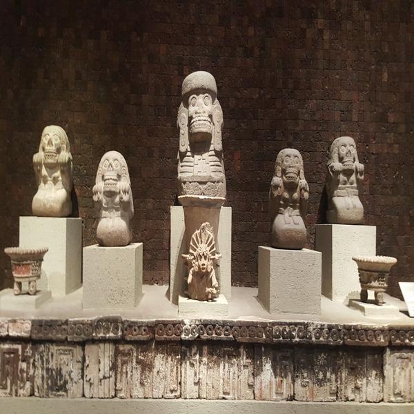 MUSEO ANTROPOLOGIA E HISTORIA 2